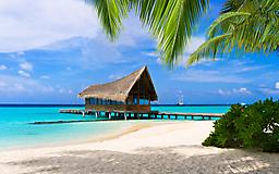 Домик на море, пальмы